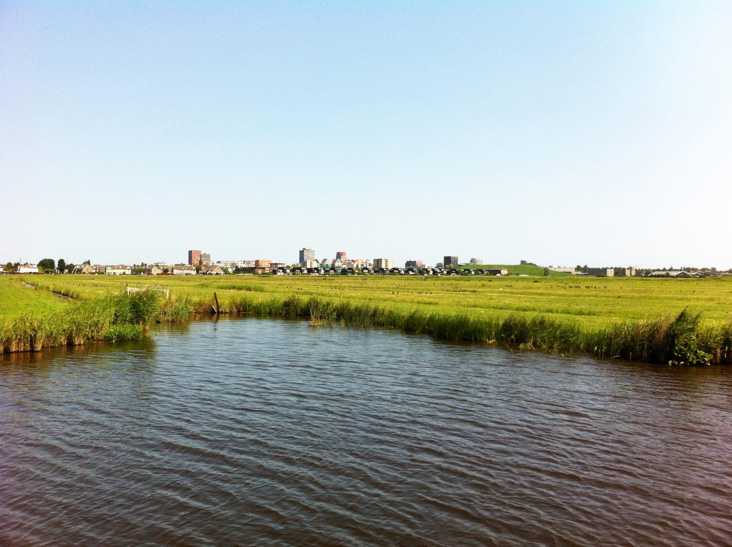 Fietsexcursie op 25 september  over de toekomst van de veenweiden in de Zaanstreek